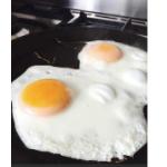 Reading - Eggs