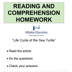 Reading - Life cycle of the sea turtle