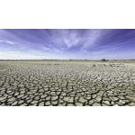 Reading - After the Drought