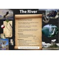 Year 3 Narrative Writing - The River